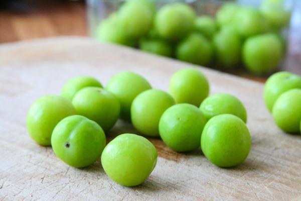 green plum erik
