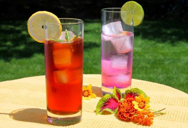 andy-tea-summer