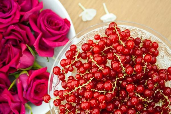 berries-roses