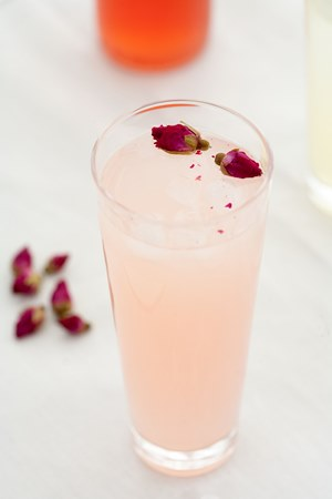 rhubarb 4