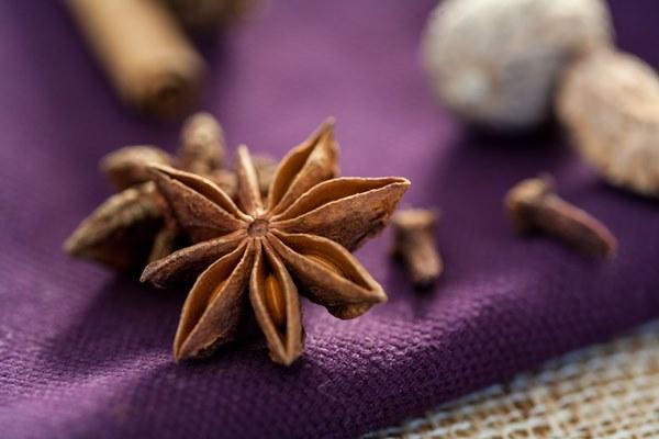spice-star-anise