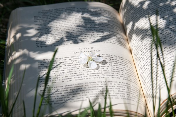 kb-books2