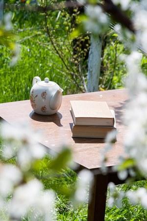 teatime garden