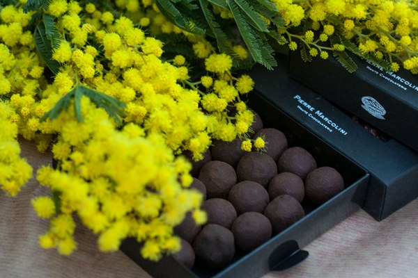 mimosa and chocolate
