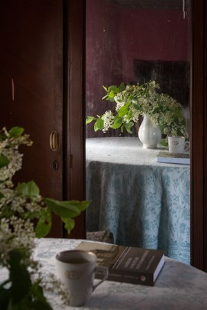 bird cherries tea book
