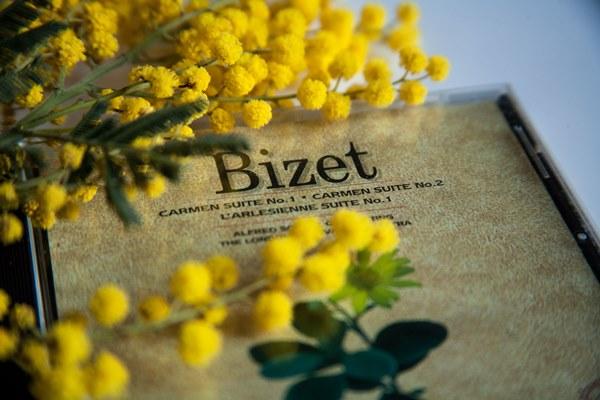 mimosa-bizet1