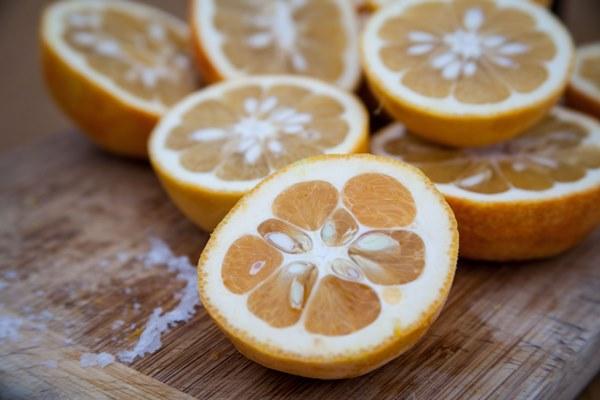 bitter orange1