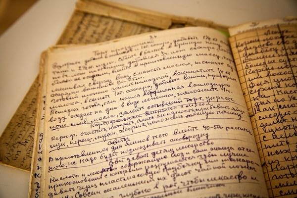 olena's book