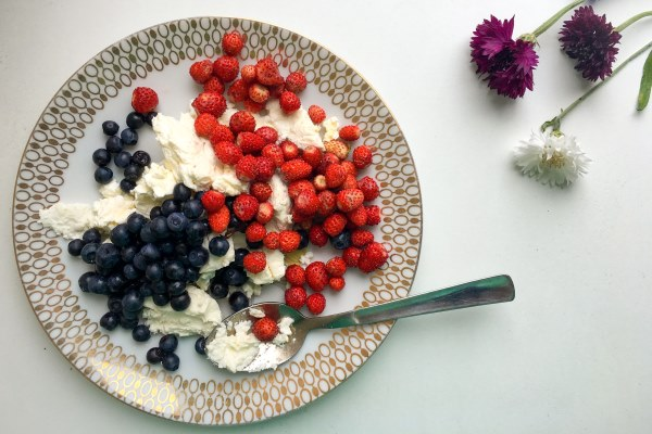 berries and cornflowers1