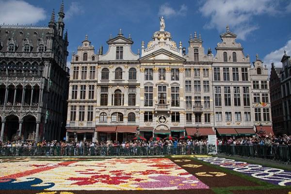 flowercarpet2016