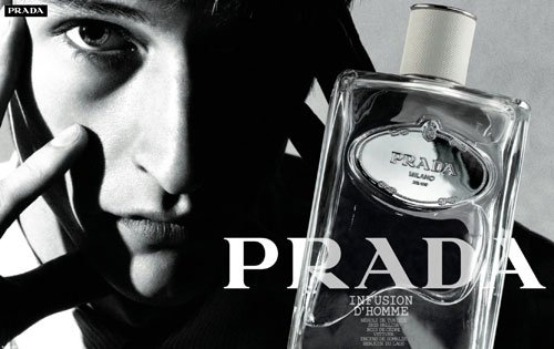 Prada Infusion d Homme   Fragrance Review 465c61e41cb