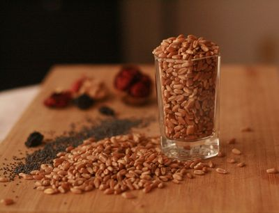 Wheat and poppyseeds